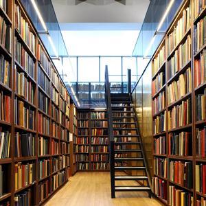 Библиотеки Чекмагуша