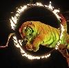 Цирки в Чекмагуше